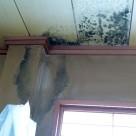 温泉旅館調理棟 雨漏り修理 屋上防水 金沢東店
