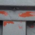 鉄板瓦棒屋根からの雨漏り発生原因 西東京店